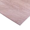 5.5mm Chinese Hardwood Face Poplar Core External Grade Plywood B/BB CE2+ 2440mm x 1220mm (8′ X 4′)
